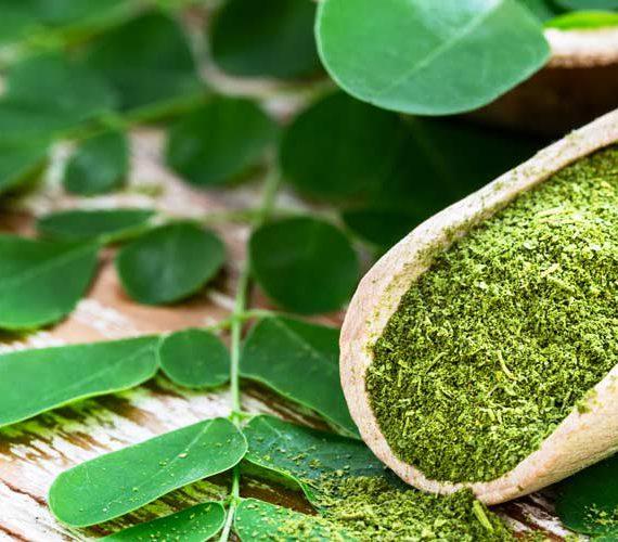 Moringa thee: de complete gids voor theeliefhebbers